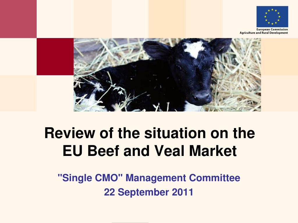 review of the situation on the eu beef and veal market l.