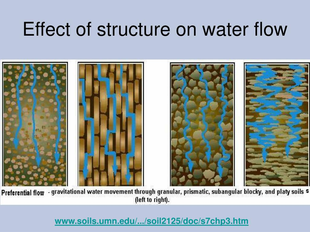 Effect of structure on water flow