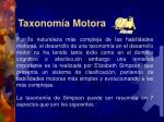 taxonom a motora