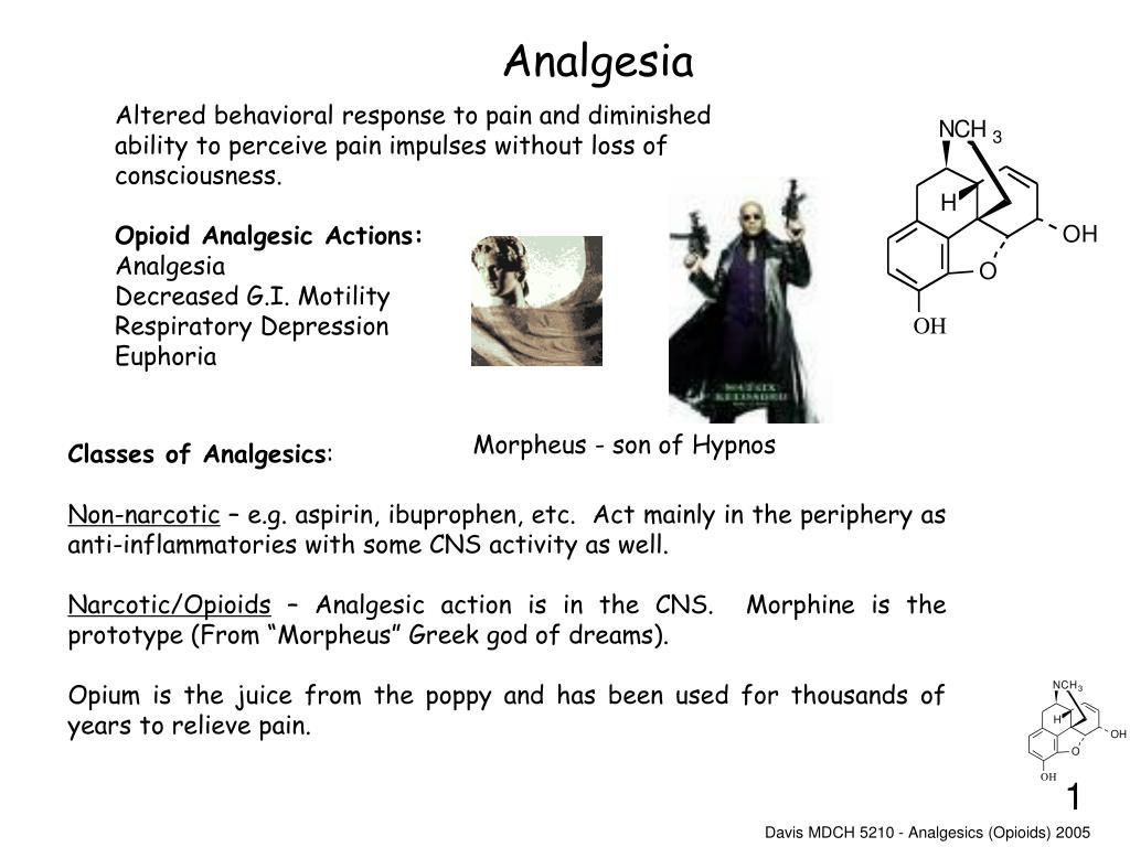 analgesia l.