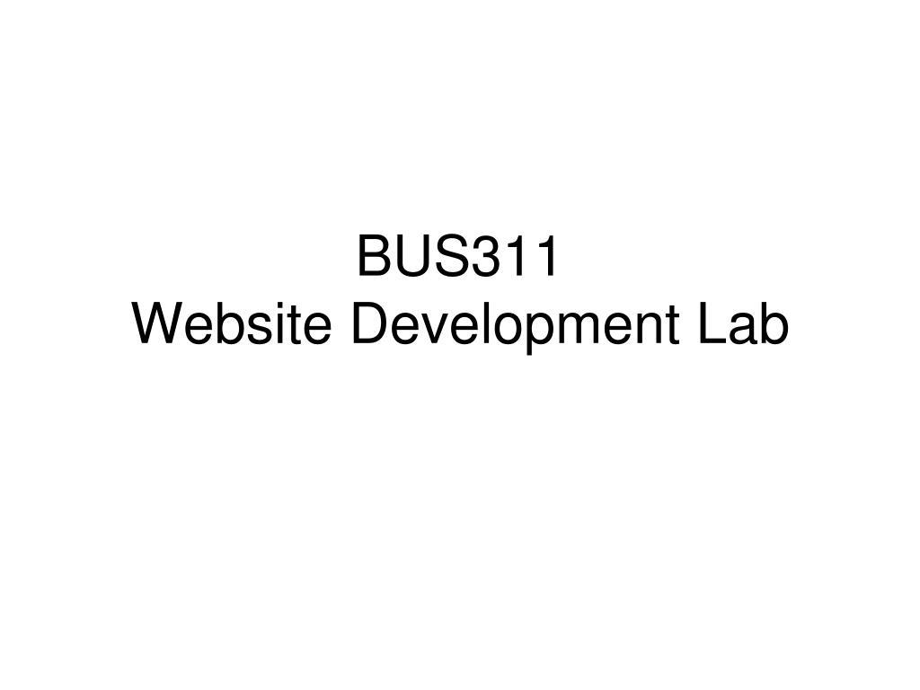 bus311 website development lab l.