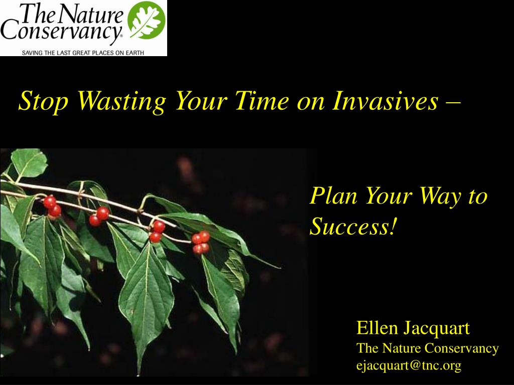 stop wasting your time on invasives l.