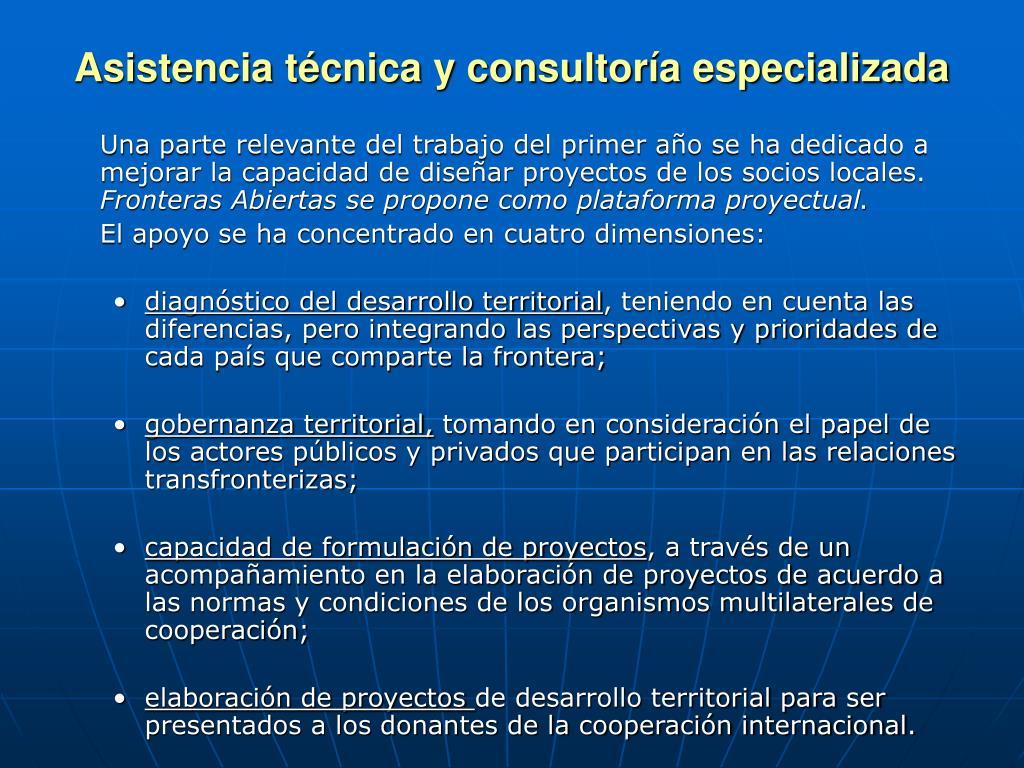 Asistencia técnica y consultor