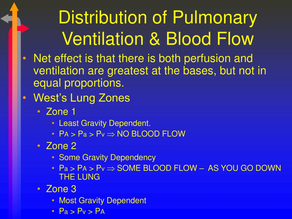 Distribution of Pulmonary Ventilation & Blood Flow