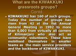 what are the kiwakkuki grassroots groups contd