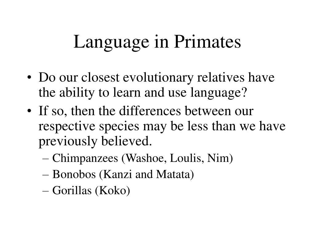 language in primates l.