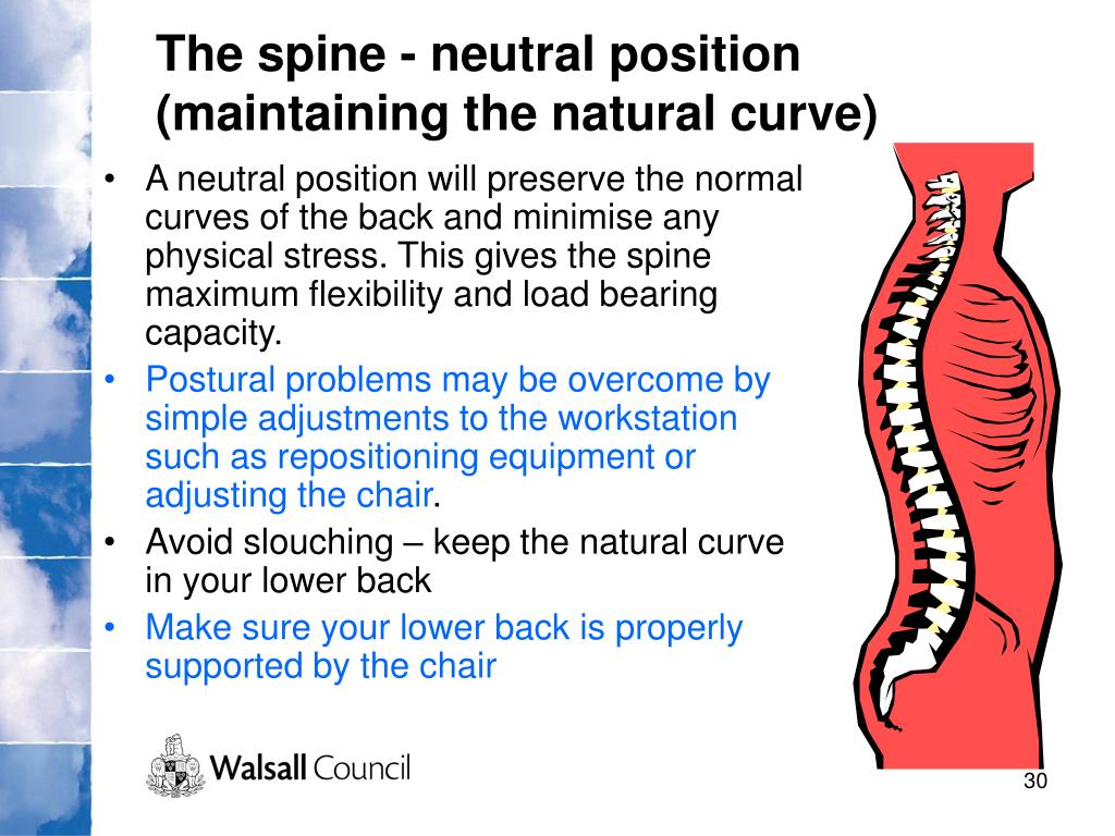 The spine - neutral position (maintaining the natural curve)