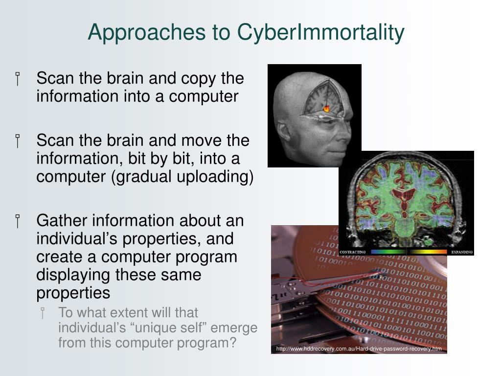 Approaches to CyberImmortality