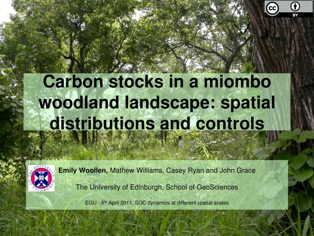 carbon stocks in a miombo woodland landscape spatial distributions and controls l.