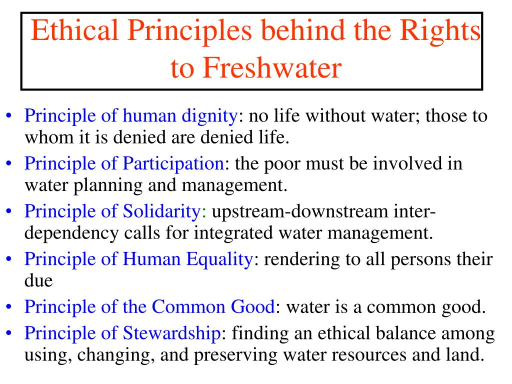 Principle of human dignity