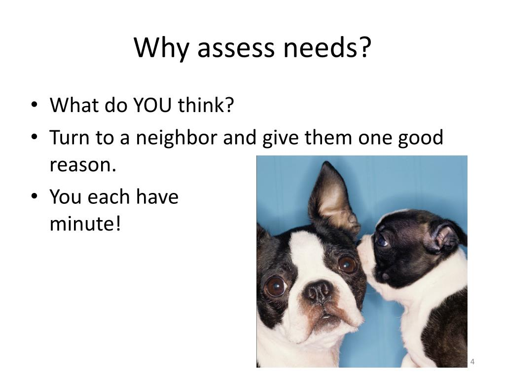 Why assess needs?