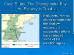case study the chesapeake bay an estuary in trouble