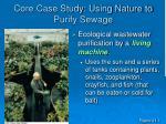 core case study using nature to purify sewage