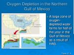 oxygen depletion in the northern gulf of mexico