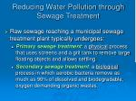 reducing water pollution through sewage treatment38
