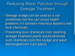 reducing water pollution through sewage treatment41