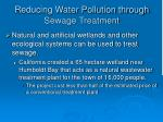 reducing water pollution through sewage treatment43