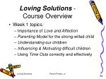 loving solutions course overview