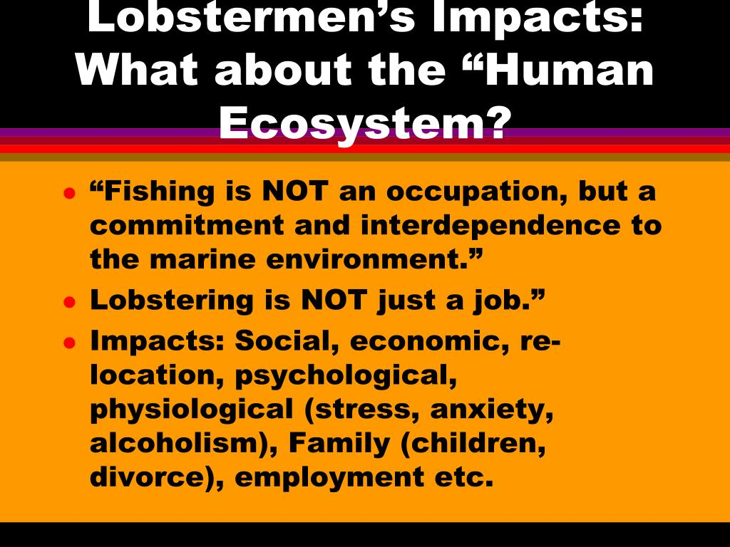"Lobstermen's Impacts: What about the ""Human Ecosystem?"