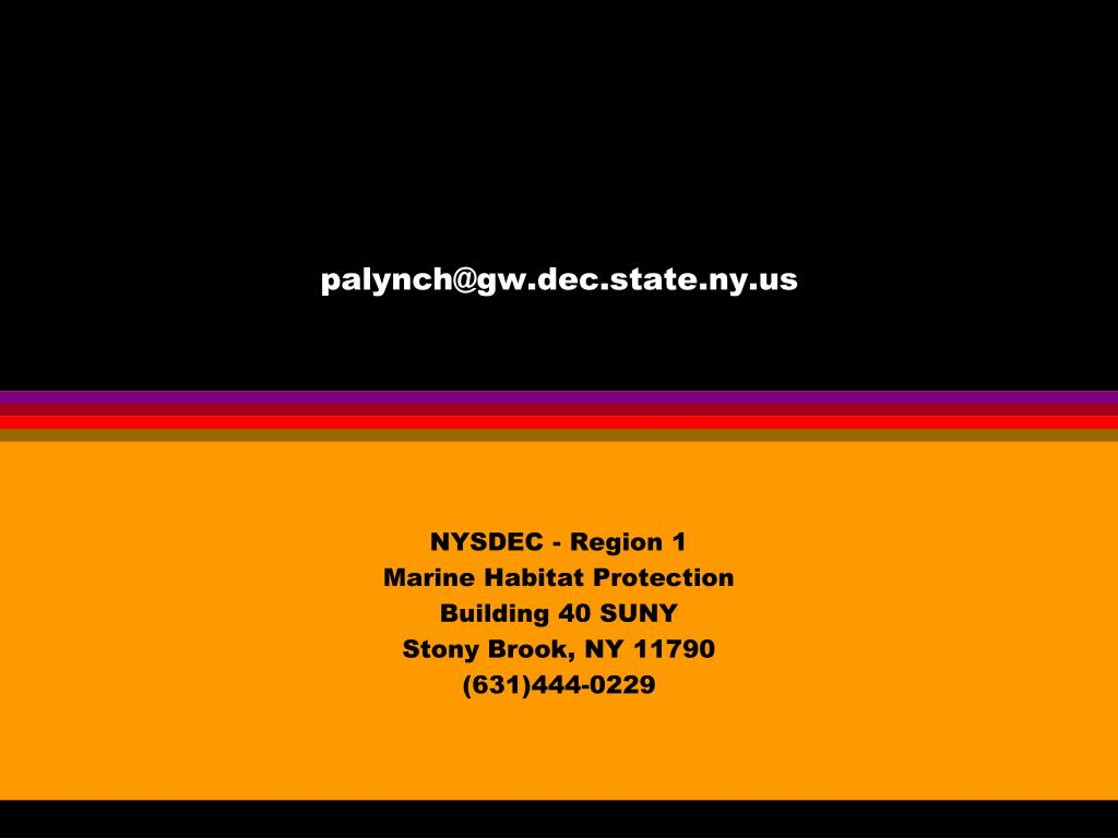 palynch@gw.dec.state.ny.us