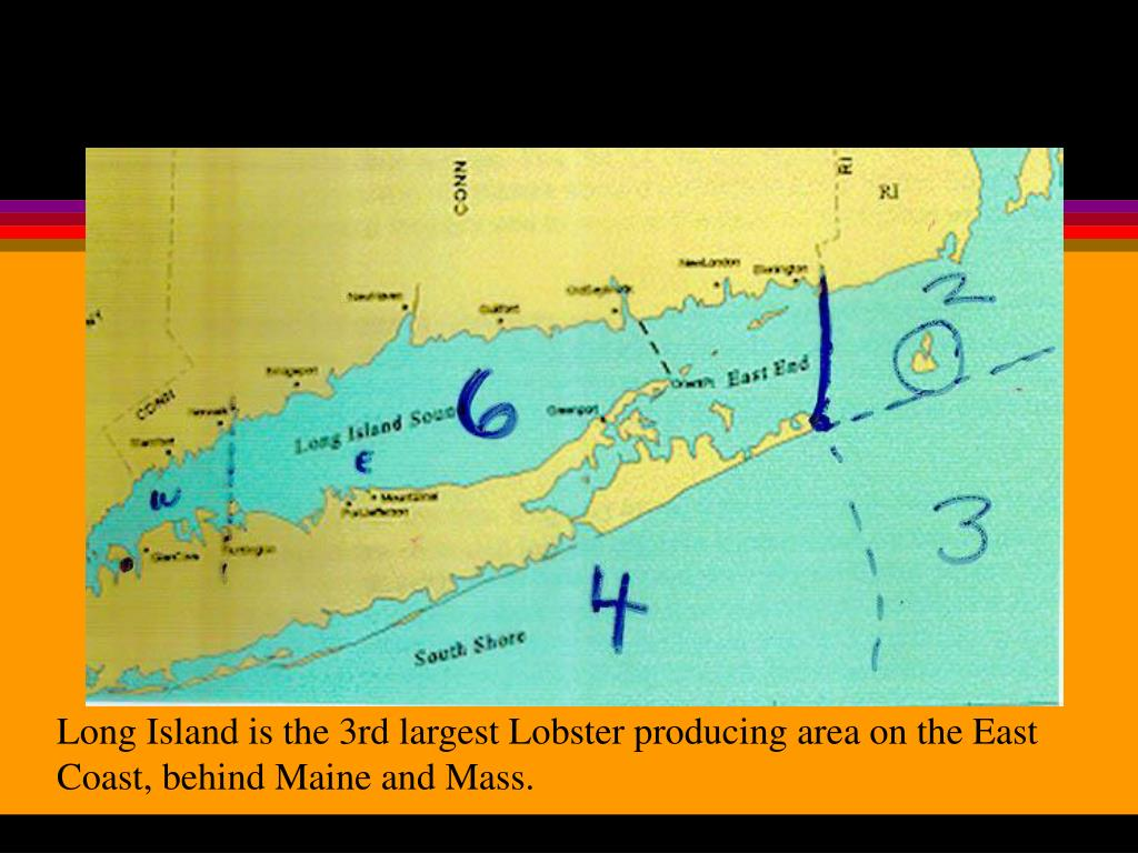 Long Island is the 3rd largest Lobster producing area on the East
