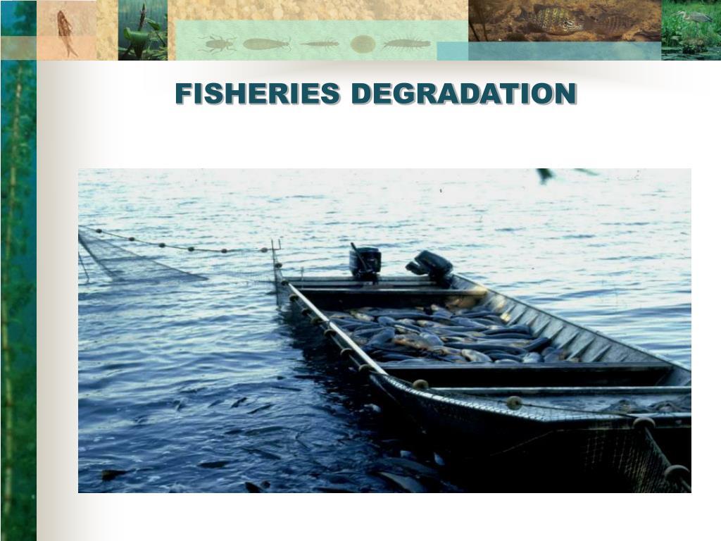 FISHERIES DEGRADATION