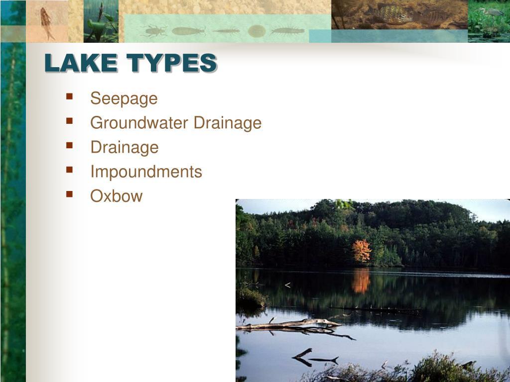 LAKE TYPES