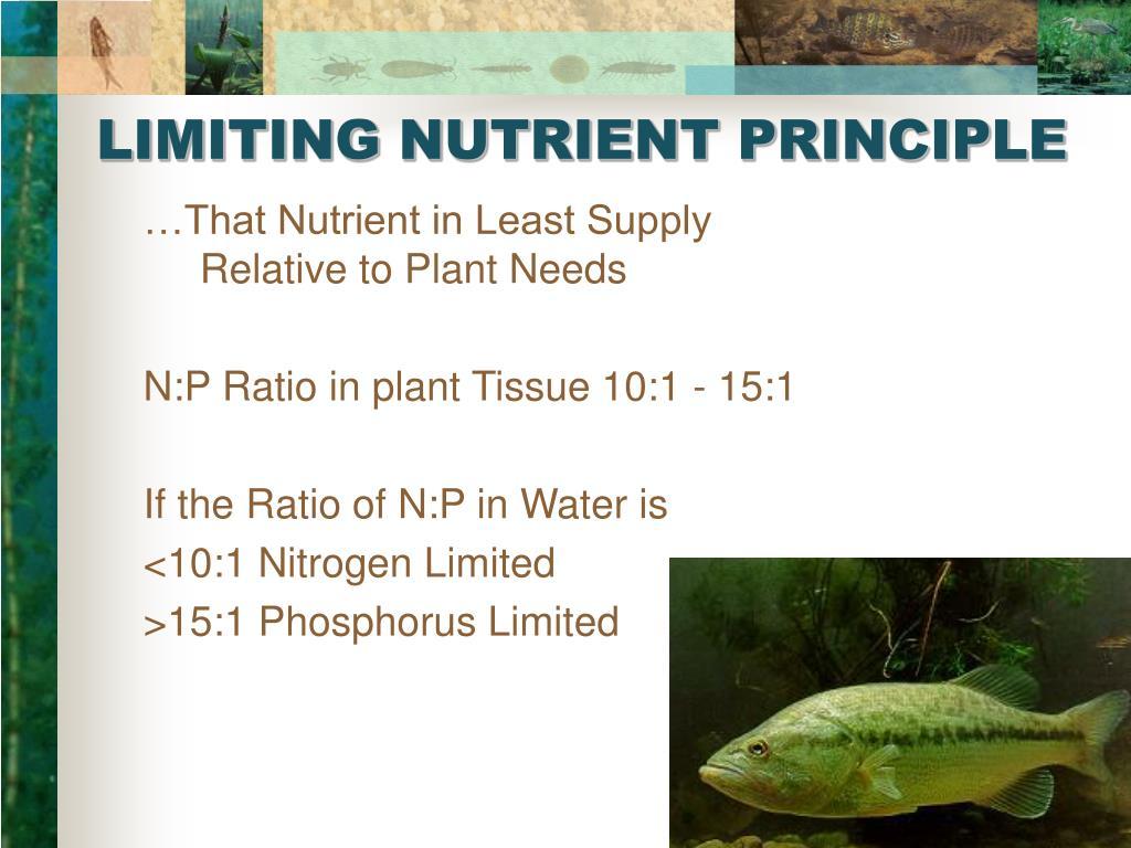 LIMITING NUTRIENT PRINCIPLE