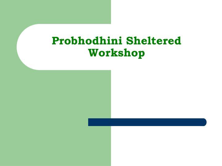 Probhodhini sheltered workshop