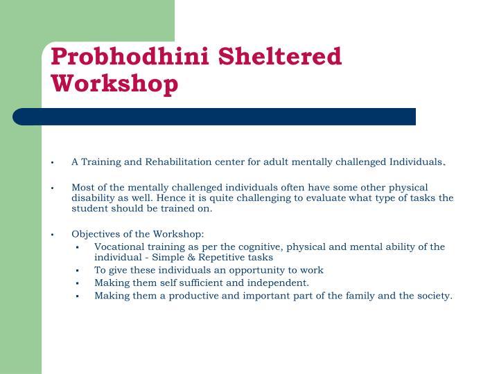 Probhodhini sheltered workshop3