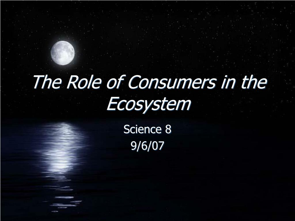 the role of consumers in the ecosystem l.