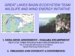 great lakes basin ecosystem team wildlife and wind energy initiative4