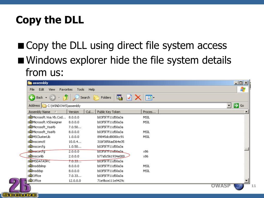 Copy the DLL