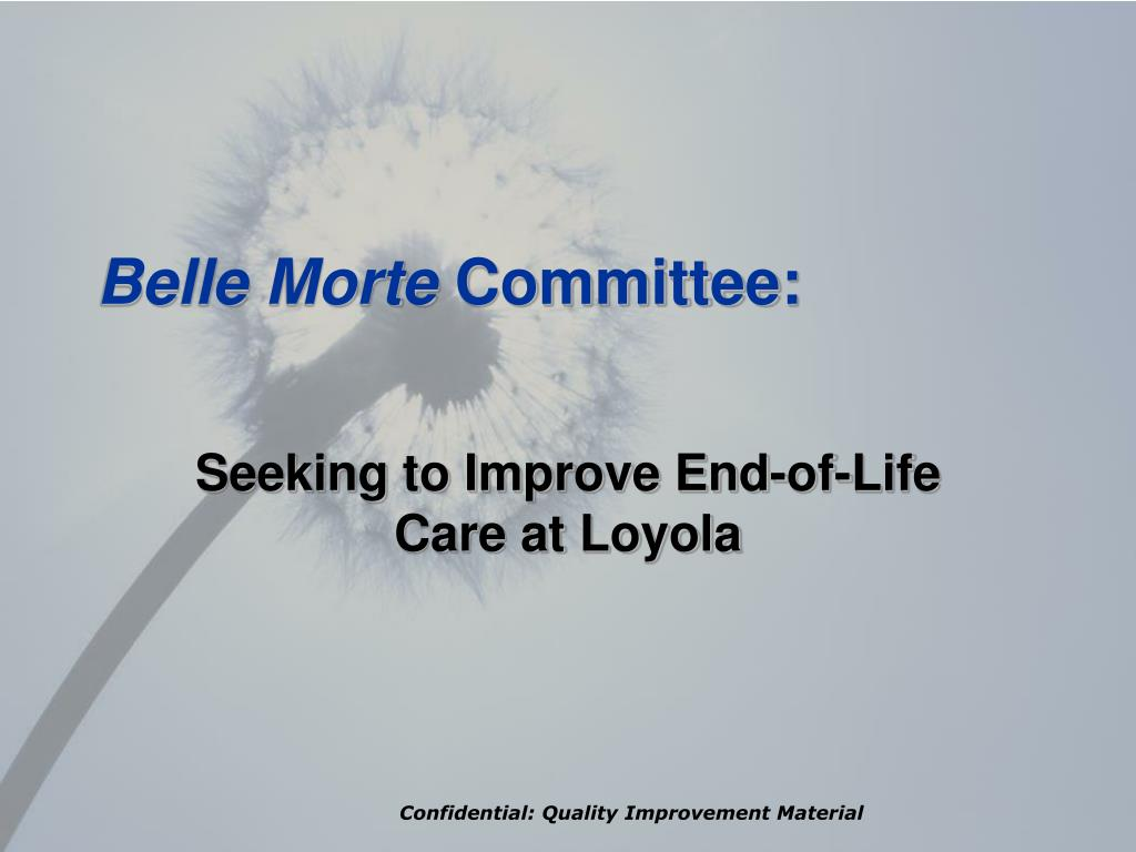 belle morte committee l.