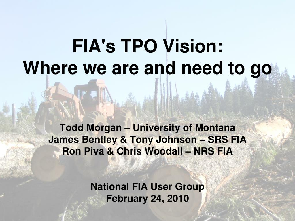 fia s tpo vision where we are and need to go l.