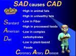 sad causes cad
