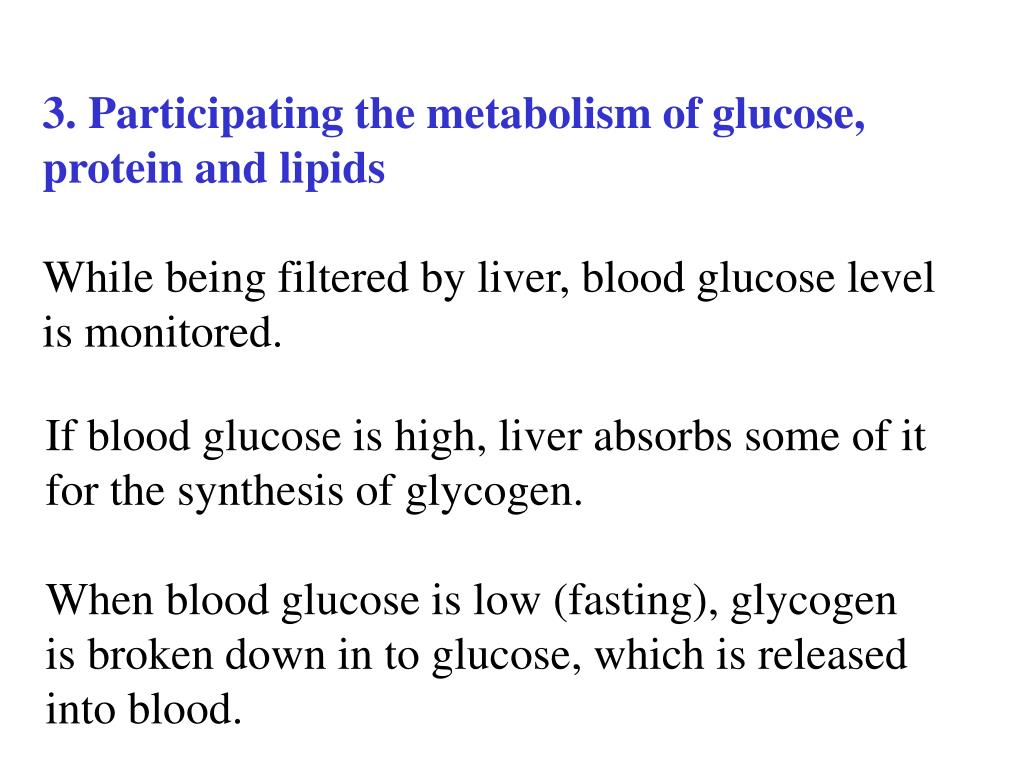 3. Participating the metabolism of glucose,