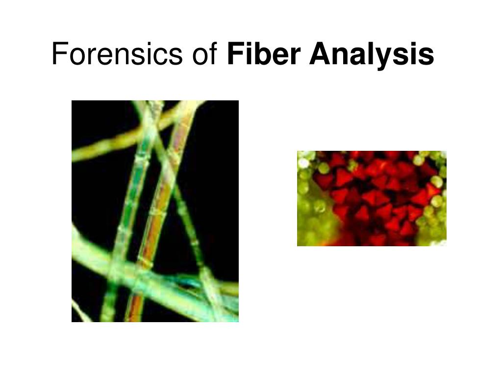 forensics of fiber analysis l.