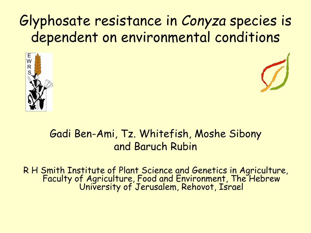 glyphosate resistance in conyza species is dependent on environmental conditions l.