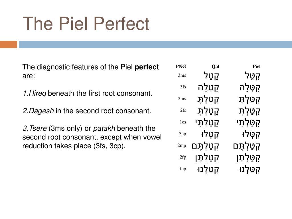 The Piel Perfect