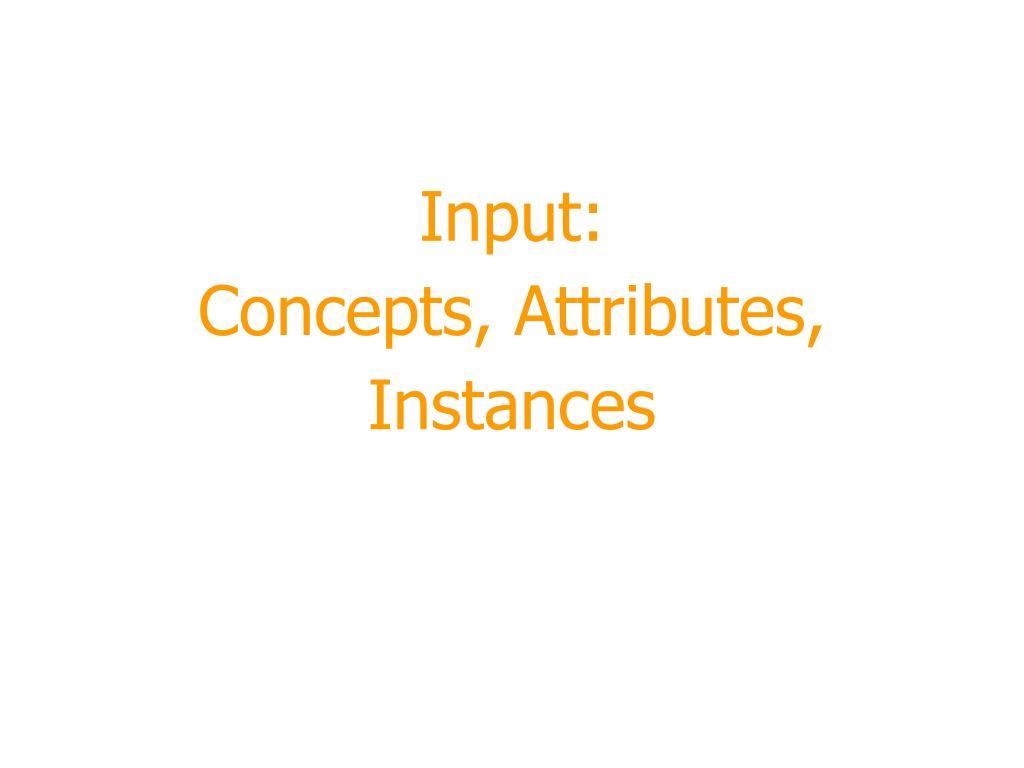 input concepts attributes instances l.