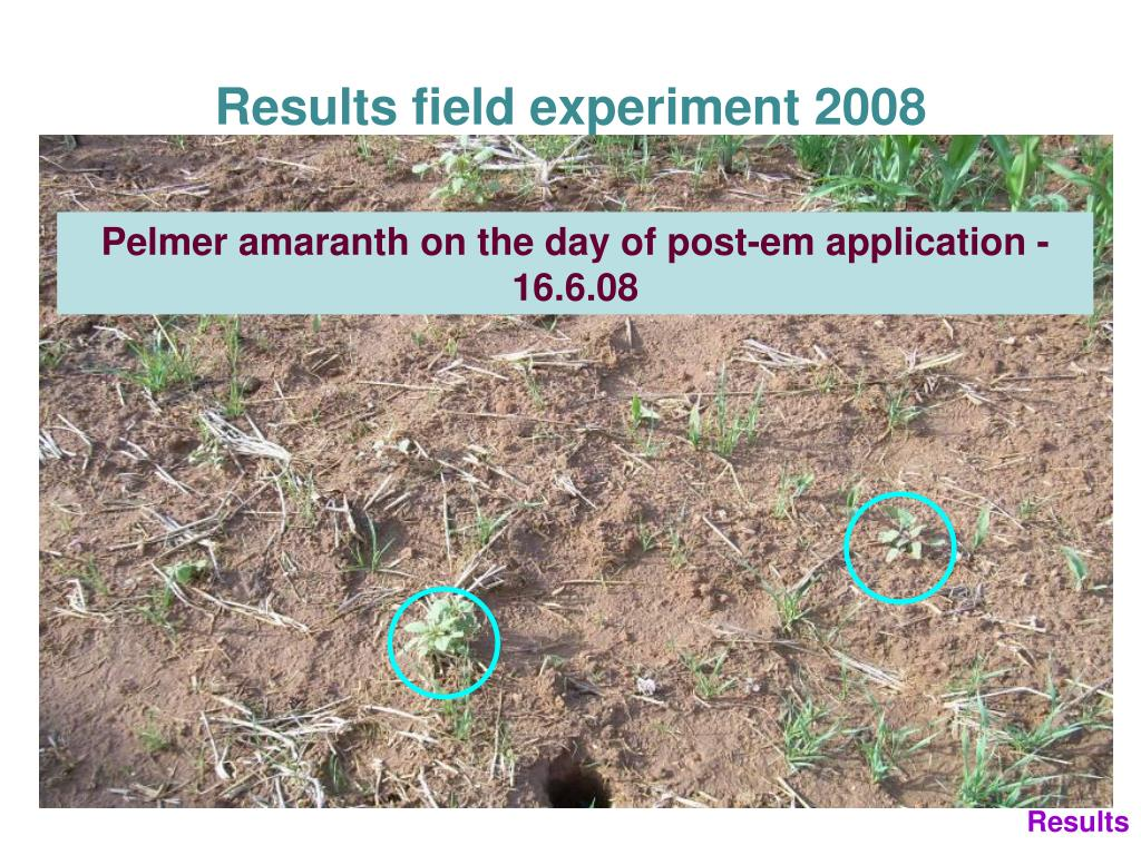 Results field experiment 2008