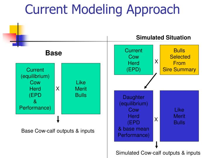 Current modeling approach