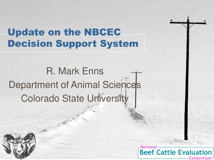 Update on the nbcec decision support system