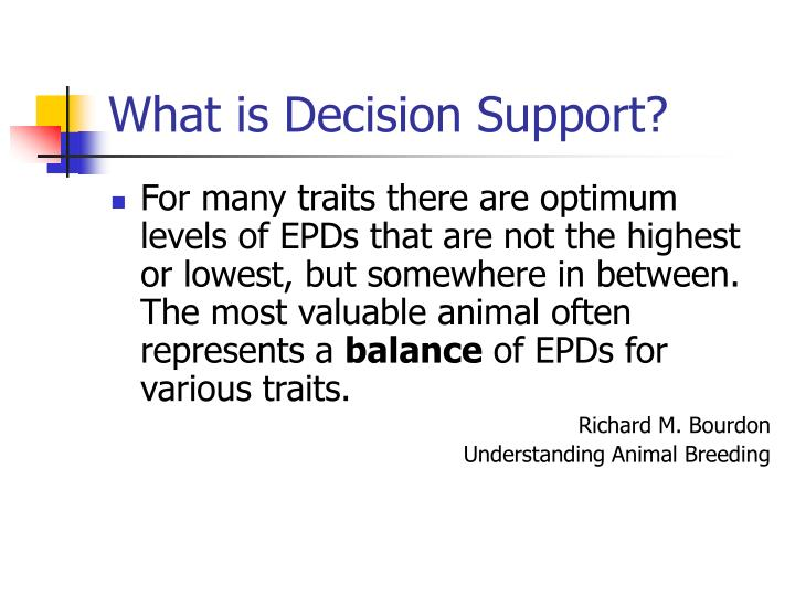What is decision support