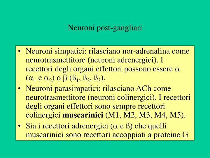 Neuroni post-gangliari