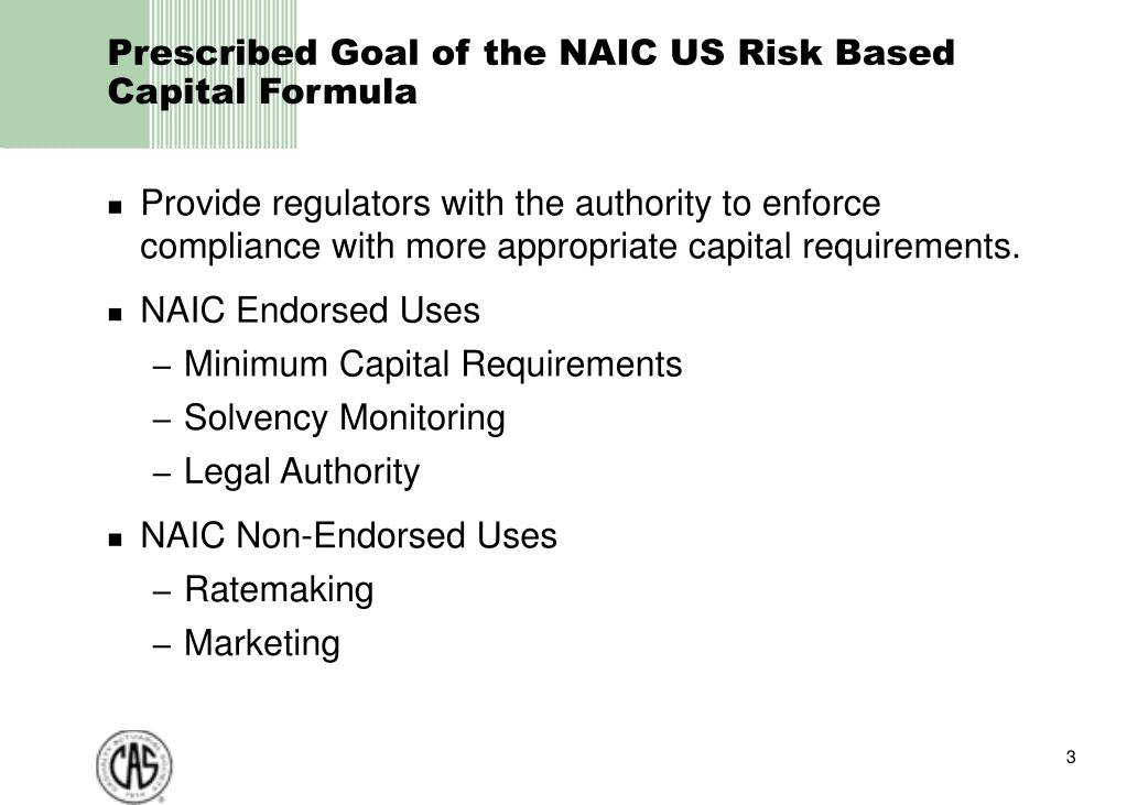 naic risk based capital instructions