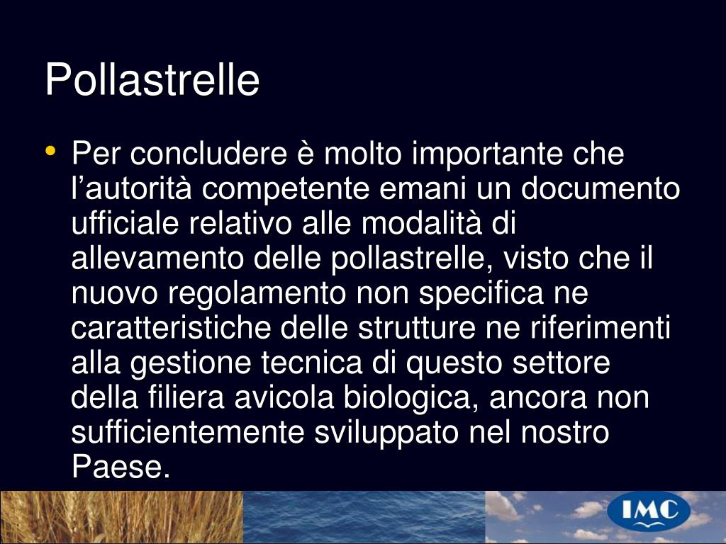 Pollastrelle