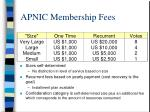 apnic membership fees