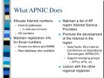 what apnic does